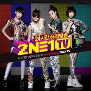 2NE1 TV: Season 1 (2009) photo