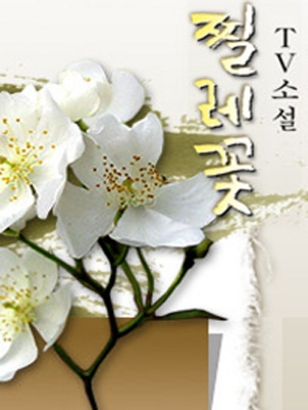 Tv Novel: Briar Flower