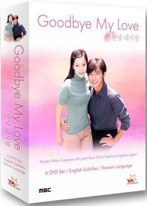 Goodbye My Love (1999) poster