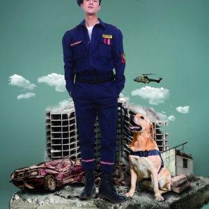 Hero Dog 3 (2019) photo