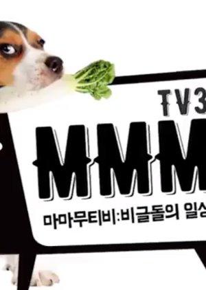 MMMTV3