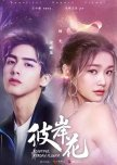 Chinese Dramas That Aren't Out Yet