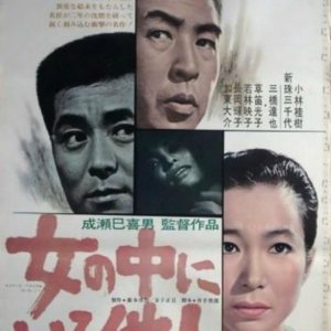The Stranger Within a Woman (1966) photo