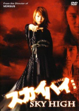 Sky High (2003) poster