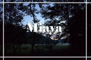 Miaya