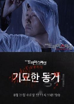 Drama Special Season 4: The Strange Cohabitation (2013) poster