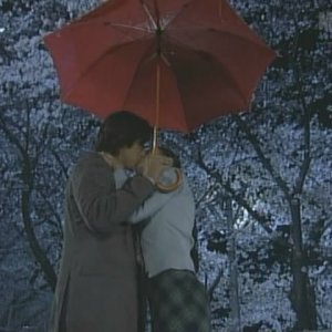 Love Revolution (2001) photo