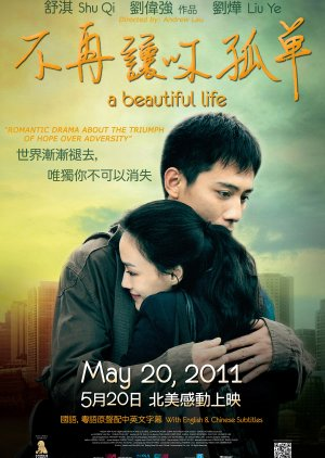 A Beautiful Life (2011) poster