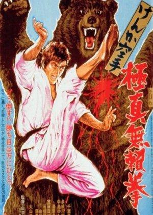Karate Bearfighter