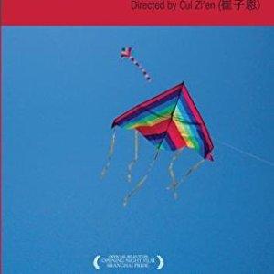 Queer China, 'Comrade' China (2009)