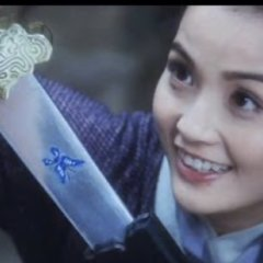 The Butterfly Lovers (2008) photo