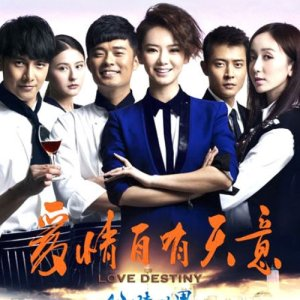 Love Destiny (2013)