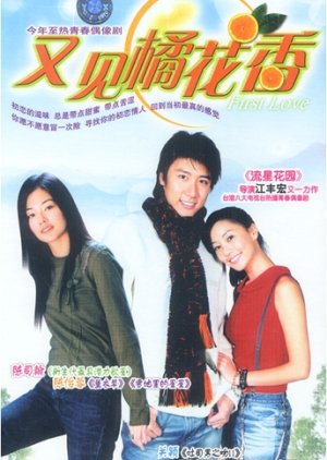 First Love (2003) poster