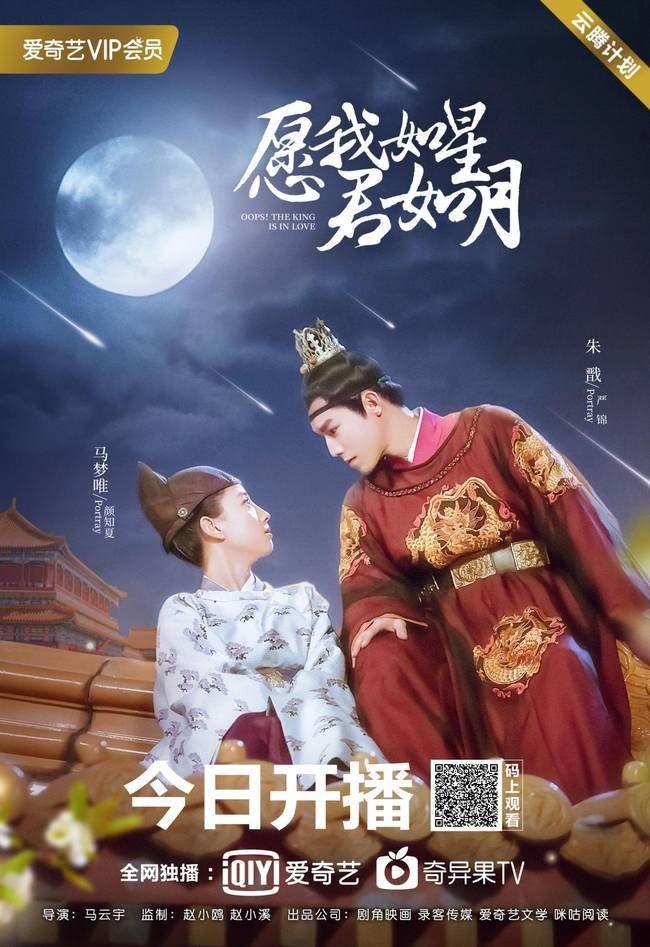 Oops! The King is in Love Chinese Drama Review (2020 ...