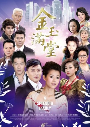 A Splendid Family (2013) poster