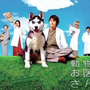 Dobutsu no Oisha-san (2003) photo