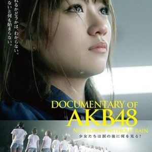 Documentary of AKB48: No Flower Without Rain (2013) photo
