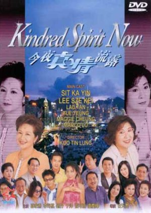 A Kindred Spirit (1995) poster