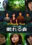 Old golden Japanese dramas from the '90s. ♥