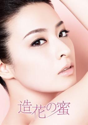 Zouka no Mitsu (2011) poster
