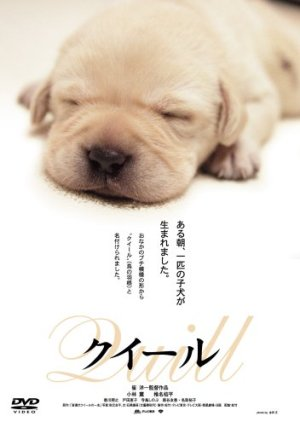 Quill (2004) poster