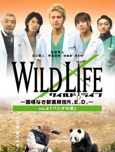 Wild Life (2008) photo