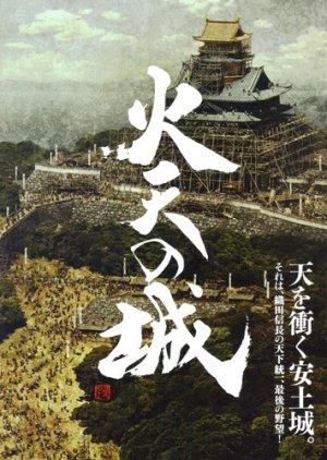 Castle Under Fiery Skies (2009) poster