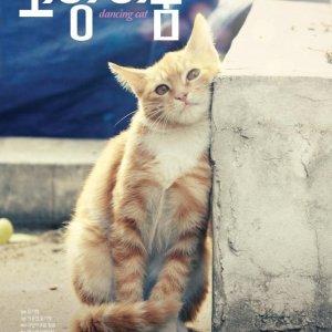 Dancing Cat (2011) photo
