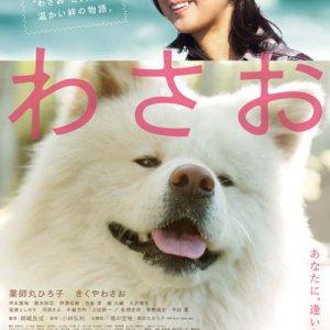 Wasao (2011) photo