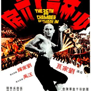The 36th Chamber of Shaolin (1978) photo