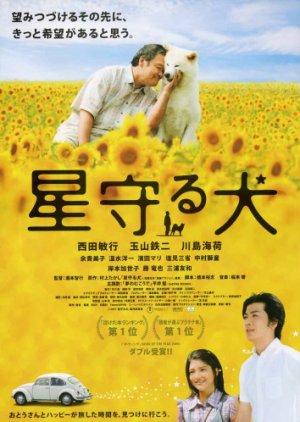 Star Watching Dog (2011) poster