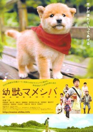 Mameshiba Cubbish Puppy