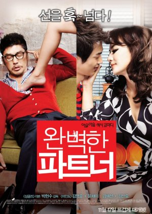 Perfect Partner (2011) poster
