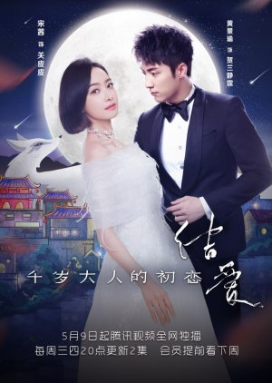 The Love Knot: His Excellency's First Love chinese drama review