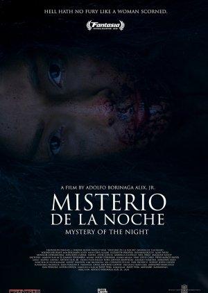 Misterio De La Noche () poster