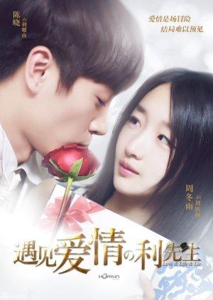 Love & Life & Lie (2017) poster
