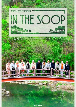 Seventeen in the Soop