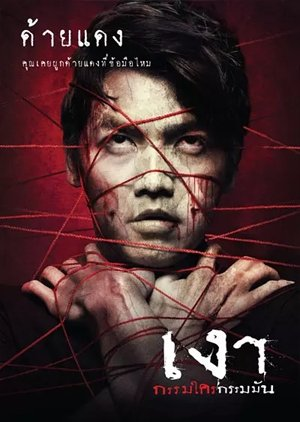 Shadow (2010) poster