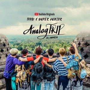 Analog Trip (2019) photo