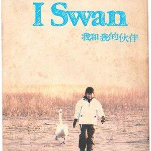 I Swan (2012) photo