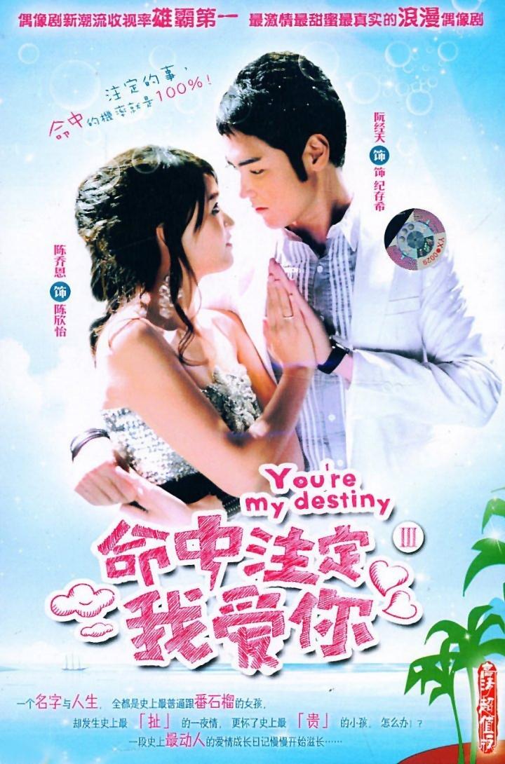 Fated to Love You (2008) - MyDramaList