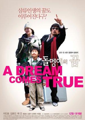 A Dream Comes True (2009) poster