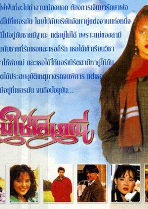 Dichan Mai Chai Sopaynee