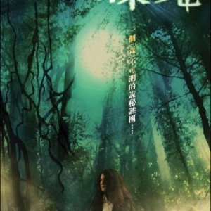 Forest of Death (2007) photo