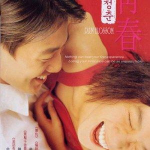 Plum Blossom (2000) photo