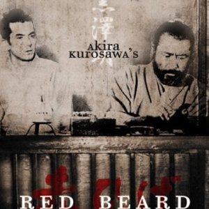 Red Beard (1965) photo