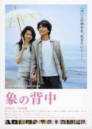 Walking My Life (2007) poster