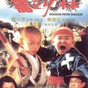 Dragon From Shaolin (1996) photo