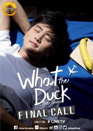 What the Duck: Final Call