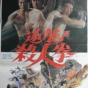 The Street Fighter's Last Revenge (1974) photo